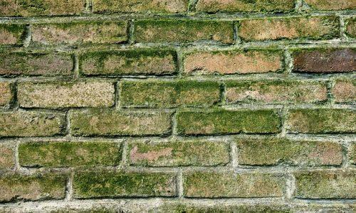 wall-3059491_640